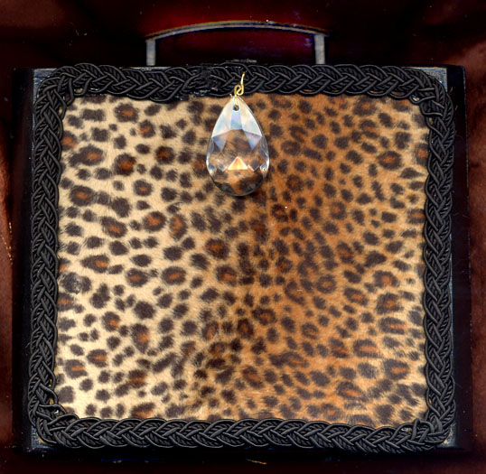 Tamara Saranpaa, OR. leopard skin  cigar box side