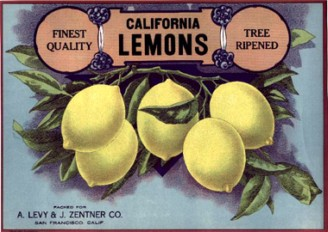 Vintage Fruit Labels, Lisa Cook